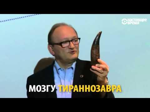 В Узбекистане нашли «умного» динозавра с большим мозгом