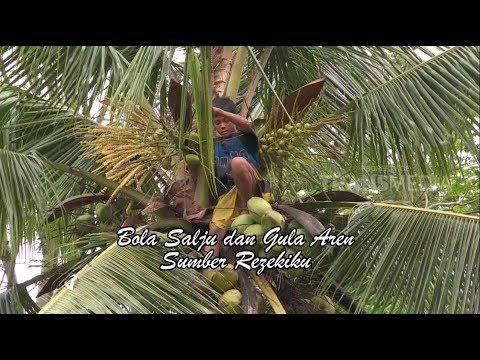 ORANG PINGGIRAN | BOLA SALJU DAN GULA AREN SUMBER REJEKIKU (Part 1)