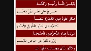 معلقة عنترة بن شداد (هل غادر الشعراء من متردم )  YouTube