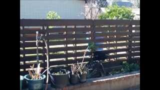 Pallet Fence (very Simple)