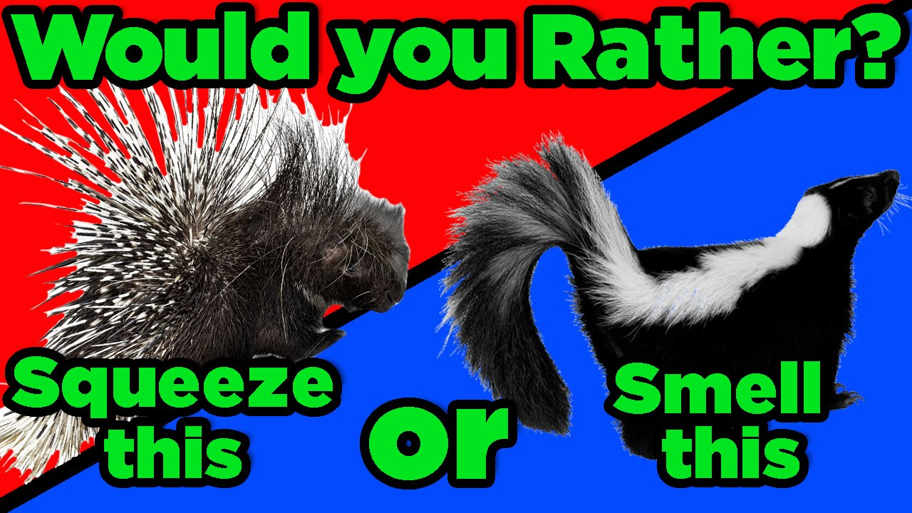 GTLive: The GREAT Debate! Would You Rather... - GTLive: The GREAT Debate! Would You Rather...