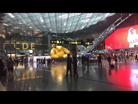 Катар, Доха. Транзитная зона аэропорт Хаммад в Дохе. Транзит 4 часа Доха- Москва.