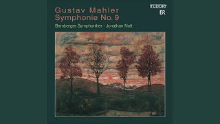 Symphony No. 9 in D Major: III. Rondo-Burleske: Allegro assai