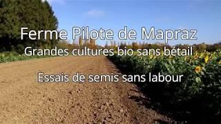 Travail réduit et labour à la Ferme Pilote de Mapraz - AGRIDEA
