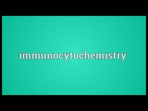 Immunocytochemistry Meaning