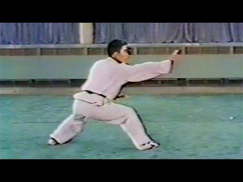 【武術】1976 任継華 (通臂拳) / 【Wushu】1976 Ren Jihua (Tongbiquan)