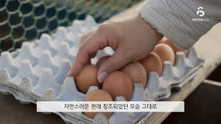 착한아빠농장 - 포항시 청년창업LAB