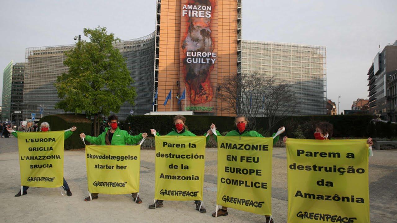 Greenpeace gibt EU Mitschuld an der Rodung des Amazonas-Regenwalds