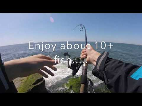 Bluefish Stacked At The Barnegat Inlet Jetty (ft. Symplex Fishing And Extreme Philly Fishing)