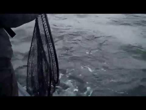 Langara Island B.C. Canada Salmon Fishing 2010