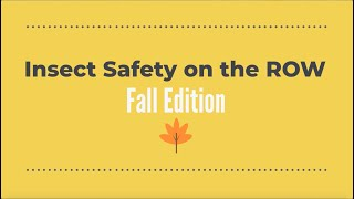 Insect Safety on the Right of Way Fall Edition
