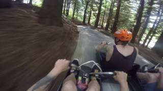 Rotorua high speed luge race!