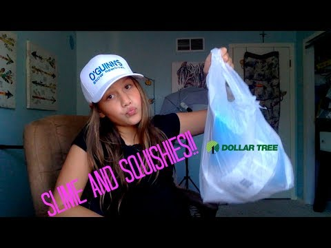 Dollar Tree Slime And Squishy Haul!! And Big Announcement  Kelsey Laesser
