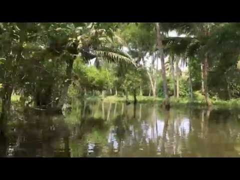 Kerala Backwaters - Poovar Island - Trivandrum