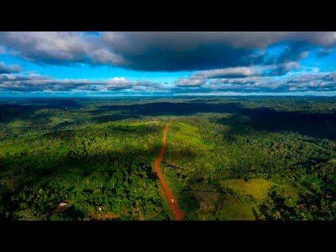 Amazon in Danger of Total Destruction Under Brazil's Right-Wing President Bolsonaro