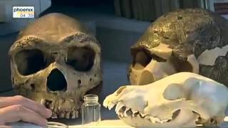 Die Geschichte um Aschkelon - doku deutsch geschichte dokumentation