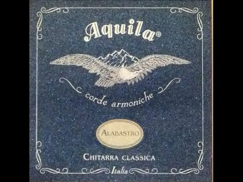 Alabastro Aquila Italian Strings on Andalusian Simplicio Vanguard Guitars Spain /Ruben Diaz flamenco