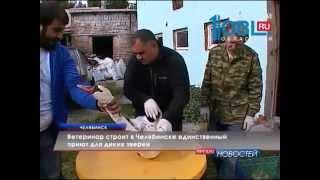 ОТВ-Челябинск-Приют СПАСИ МЕНЯ, 24 августа 2015