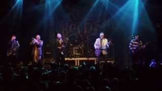 Reel Big Fish - She's Famous Now, Live @ Arena