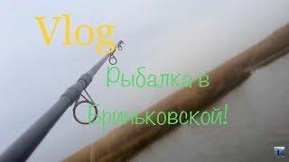 Рыбалка. Бриньковская