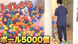 【ドッキリ】トイレから5000個のボールが雪崩れ落ちてくる!!