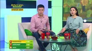 Доброе утро, Казахстан! Выпуск от 20.10.2017