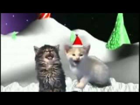 Buon Natale Zecchino Doro Testo.Buon Natale Di Enzo Iacchetti Con Testi Youtube