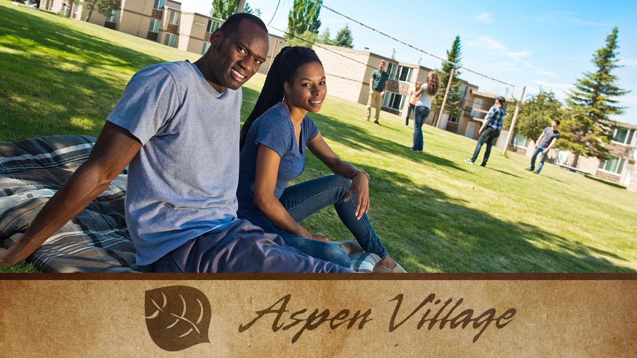 Aspen Village Commercial