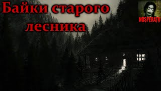 Истории на ночь - Байки старого лесника