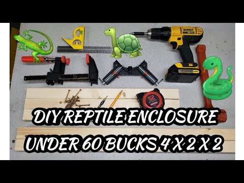 DIY REPTILE ENCLOSURE UNDER 60 BUCKS  4 X 2 X 2 STEP BY STEP BUILD