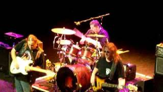 Walter Trout Band - Life In The Jungle  - The  O2 Shepherd