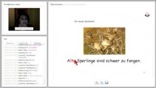 Уроки немецкого языка. Немецкий язык с преподавателем. Полиглот. Тематические уроки.