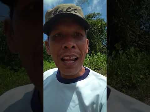 Group Turap Tebo Mancing Mania sengarat Desa Tanjung Aur