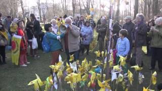 12 風車デモ ベルリン 08 03 2014 Demo gegen Atom in Berlin 桜の木 Kirschbaum vor der Japanischen Botschaft
