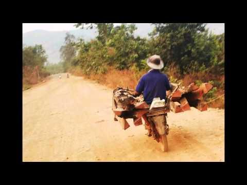 Đắk Lắk: Gỗ lậu tung hoành ở Ea H'Leo
