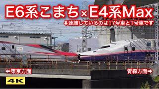 びっくり !!! E6系こまちとE4系Maxが連結 !!! 新幹線車両基地まつり 2019.10.26【4K】