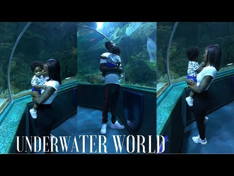 Underwater World Guam / House Shopping