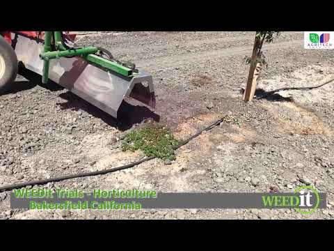 WEEDit Trials - Orchard Spraying - Bakersfield, California