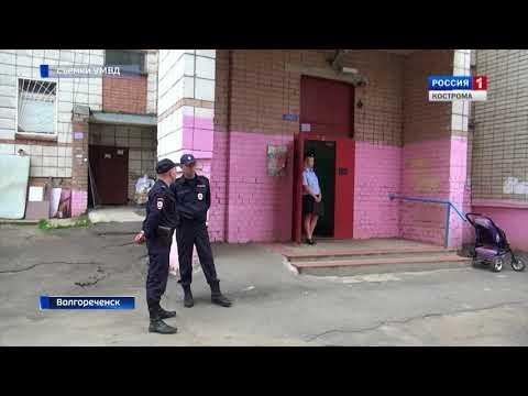 Житель Волгореченска превратил квартиру в незаконный оружейный склад