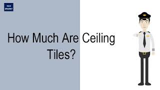 How Much Are Ceiling Tiles?