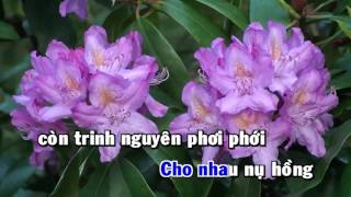 Ngày Xuân Vui Cưới Karaoke HD Hoài Linh Full Beat