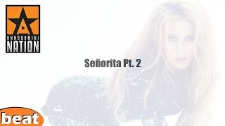 Smooth Instrumental - Senorita Pt. 2