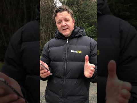 Reklame   Dagens stalltips - Bil og henger app
