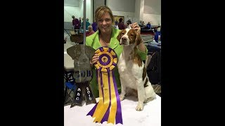 This is a short video of the end of the Best of Breed competition a...