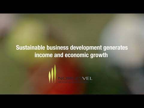 Sustainable business development generates income and economic growth in Mozambique