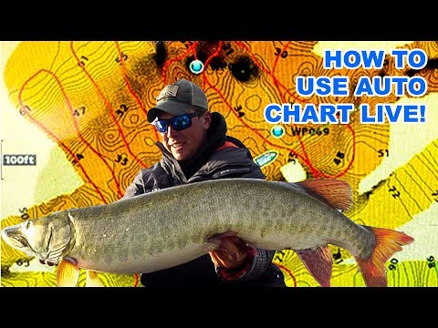 CATCHING MUSKIES USING AUTO CHART LIVE! (Tackle Tips Ep.2)