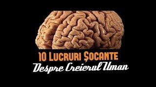 descoperi paraziții creierului revistei)