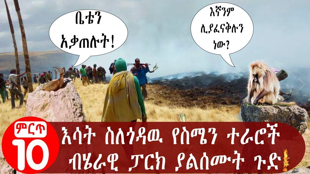 Unspoken truth about Simien Mountains National Park