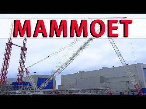 1,800 Tons Mammoet Heavy Lift Highest Gantry Crane ST³ Offshore #4