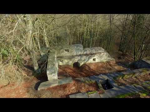 Oben Drohne - Alte Burg bei Neuburg